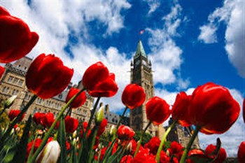 2020140 Canadian Tulip Festival and 1000 Islands