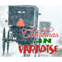 2018329 Christmas in Paradise in Lancaster