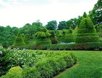 Wine and Roses of Maryland & Ladew Topiary Garden