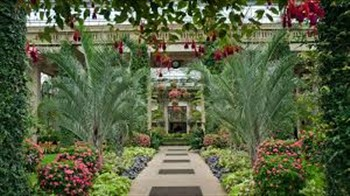 2020244 Grand Illumination Longwood Gardens