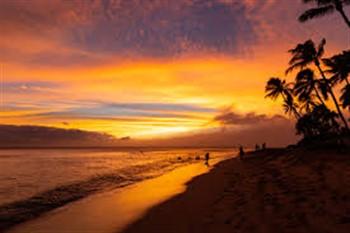2021154 Hawaiian Adventure